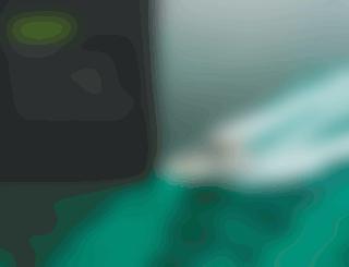 fusioncaraudio.com screenshot