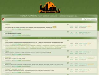 airgun-hunting.pl screenshot