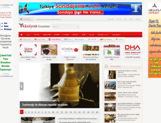 aksiyongazetesi.com screenshot