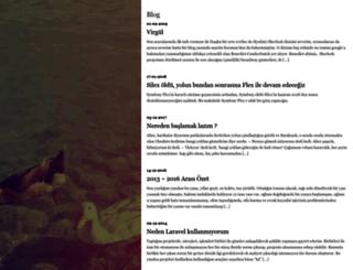 aligundogdu.com screenshot