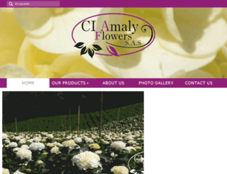 amalyflowers.net screenshot