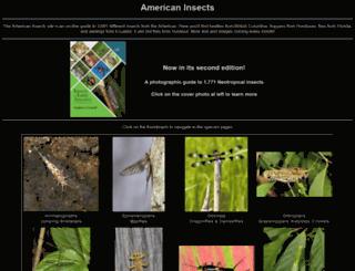 americaninsects.net screenshot