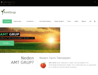 amtgrup.com.tr screenshot