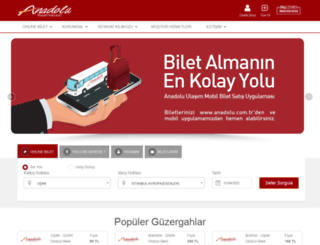 anadolu.com.tr screenshot