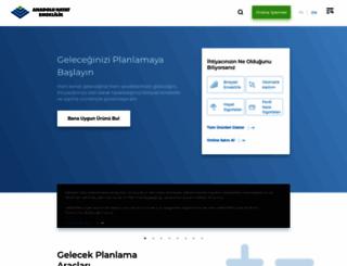 anadoluhayat.com.tr screenshot