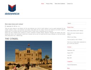 ankarakariyermerkezi.com screenshot