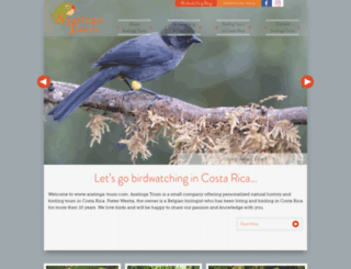 aratinga-tours.com screenshot