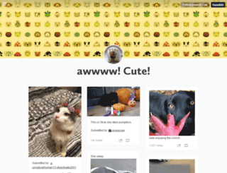 awwww-cute.tumblr.com screenshot