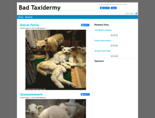 badtaxidermy.com screenshot