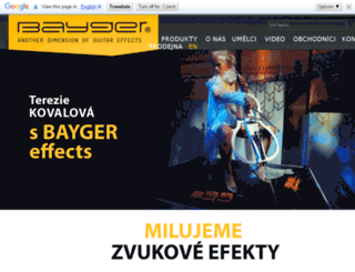 bayger.com screenshot