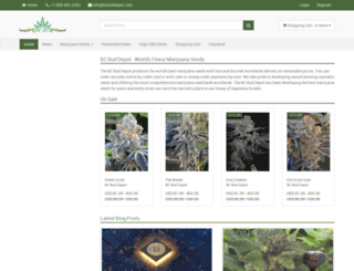 bcbuddepot.com screenshot