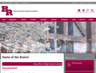 bearriver.njuhsd.com screenshot