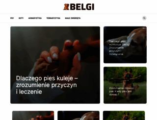 belgi.pl screenshot