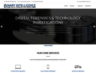 binaryintel.com screenshot