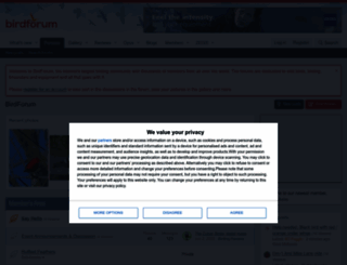 birdforum.net screenshot