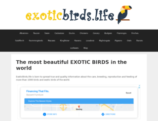 birdsnways.com screenshot