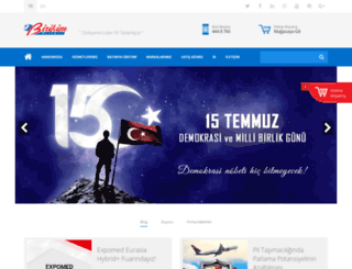 birikimpilleri.com screenshot