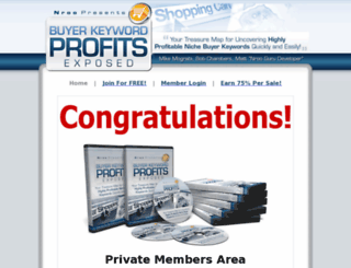 bkprofits.com screenshot