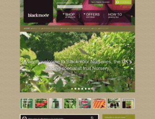 blackmoor.co.uk screenshot