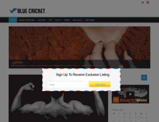 bluecricketdesign.net screenshot