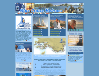 bluecruise.org screenshot