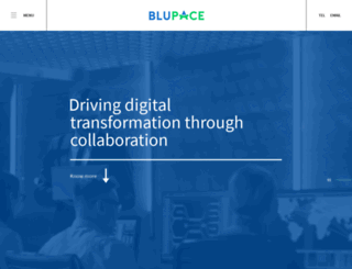blueit-services.co.uk screenshot