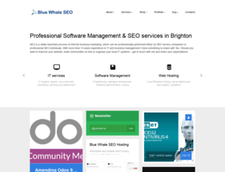 bluewhaleseo.com screenshot
