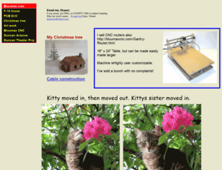 bluumax.com screenshot