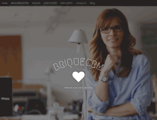 briquecrm.com screenshot
