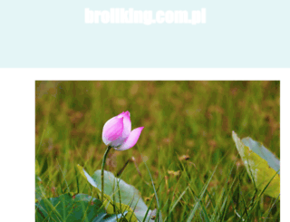 broilking.com.pl screenshot