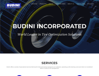 budini.com screenshot