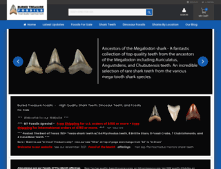 buriedtreasurefossils.com screenshot