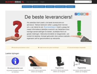 businessideas.nl screenshot