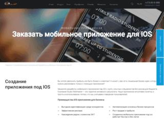 bux-ir.ru screenshot