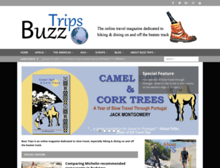 buzztrips.co.uk screenshot