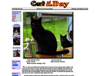 catoftheday.com screenshot