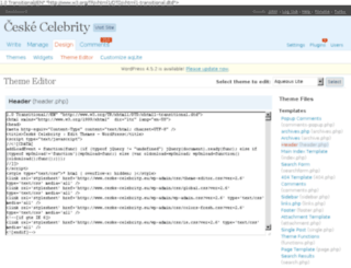 ceske-celebrity.eu screenshot