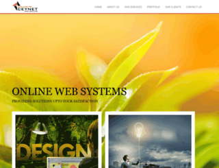 ceynet.com screenshot