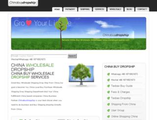 chinabuydropship.com screenshot