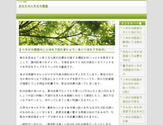 citizenservicedelivery.com screenshot