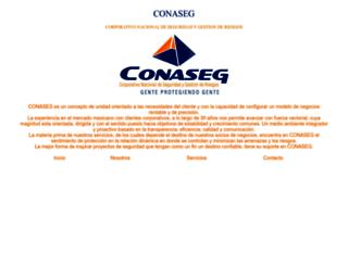 conaseg.com.mx screenshot