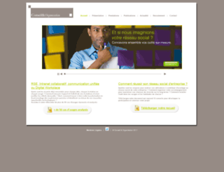 conseiletorganisation.com screenshot