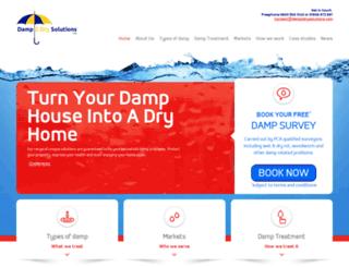 damp-solutions.com screenshot