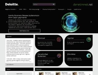 denetimnet.net screenshot