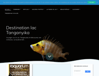 destin-tanganyika.com screenshot
