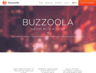 dev.buzzoola.com screenshot
