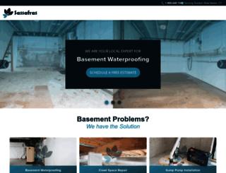 devtest151.basementsite.com screenshot