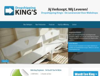 dropshippingkings.nl screenshot