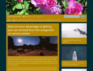 dutch-suzuki.com screenshot