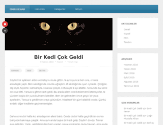 emirkenar.com screenshot